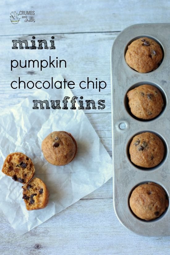 Mini Chocolate Chip Pumpkin Muffins | Crumbs and Chaos #pumpkin #snack #muffin www.crumbsandchaos.net