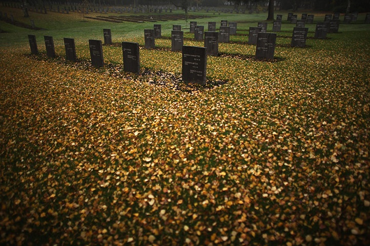 Cannock, England: Autumn leaves carpet the ground around the graves of soldiers at the German war cemetery – the only one in Britain
