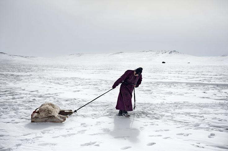 Environmental migrants: the last illusion, Ulan Bator, Mongolia, 2011 (Alessandro Grassani)
