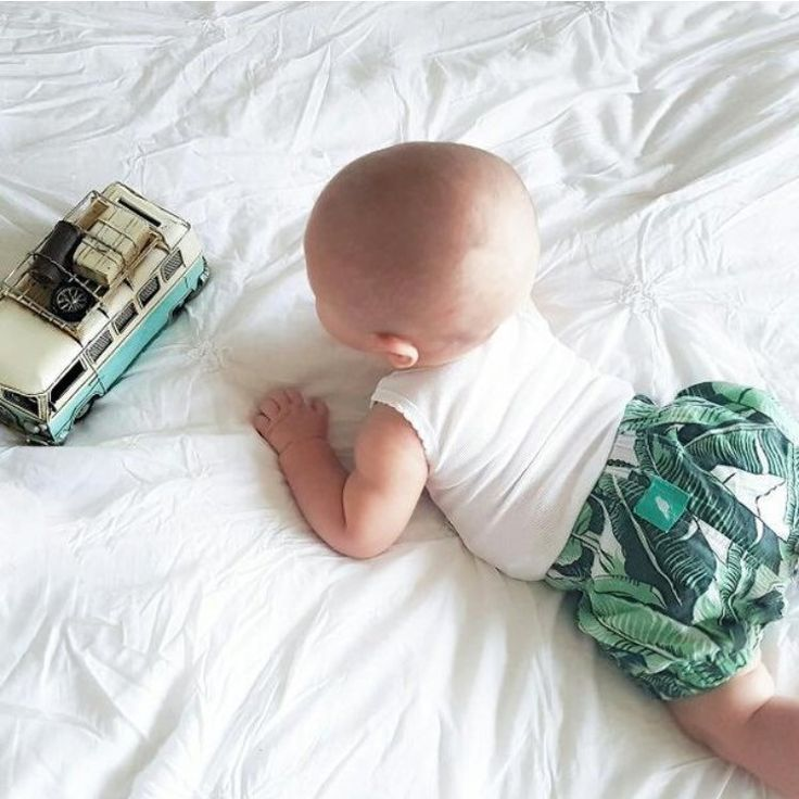 Our cutest new born summer bloomers 🌿