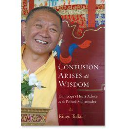 Confusion Arises as Wisdom: Gampopa's Heart Advice on the Path of Mahamudra: 9781590309957: Ringu Tulku: Books: Shambhala Publications