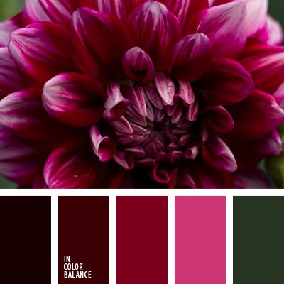 """""""пыльный"""" розовый, бордовый, весенняя цветовая палитра, винный цвет, зеленый, красный, лиловый цвет, насыщенный розовый, оливковый, оттенки зеленого, оттенки осени, подбор цвета, розовый, тёмно-зелёный, фиолетовый, цвет вина, яркий розовый."""