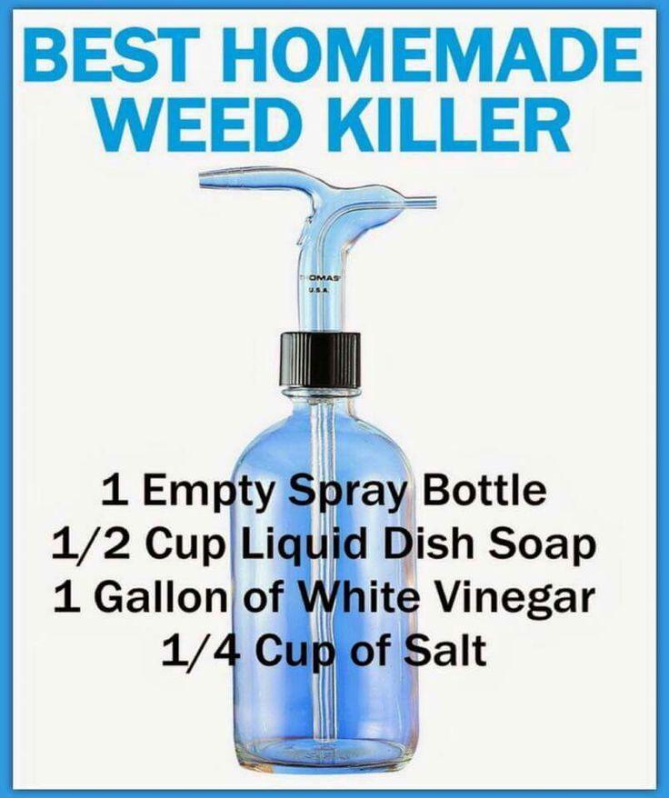 Homemade Weed Killer