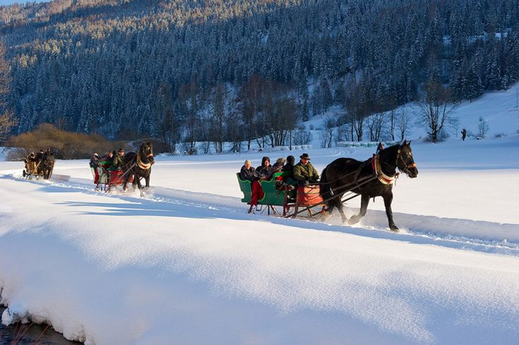 Pferdekutschenfahrten im Winter