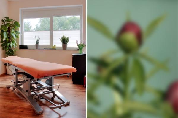 Behandlungsraum der Physiotherapie Dresden: Akupunktur, Chiropraktik, Chirotherapie, manuelle Therapie