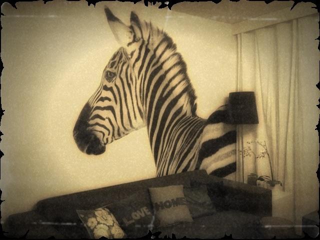 My livingroom! Homemade wallpaper from HEMA