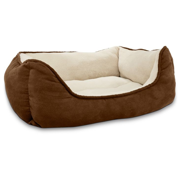 beds offered comfortable bed petco sleep pet orthopedic dog to your