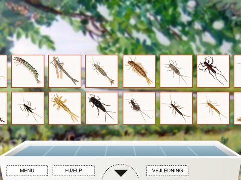 Dyr i vand er appen at have med, når der skal kigges på dyr i vandløbet.Man kan finde et leksikon over alle dyrene, man kan virtuelt lægge dyrene i de hvide bakker og til sidst skrive en rapport over forløbet. Appen koster 25 kr.