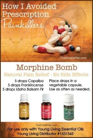 Young Living Essential Oils: Pain by Robin Dowden