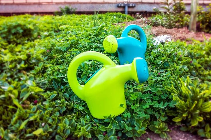 Miniland watering can is just the right size for little hands to hold and because it Miniland you know its tough. Made of extremely durable plastic with reinforced thick strong handles. Ideal for classroom use.
