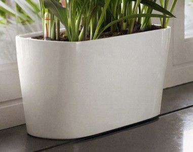 "Shopping for a long narrow planter for succulents: 16""x6""x7"", comes in black as well. $40"