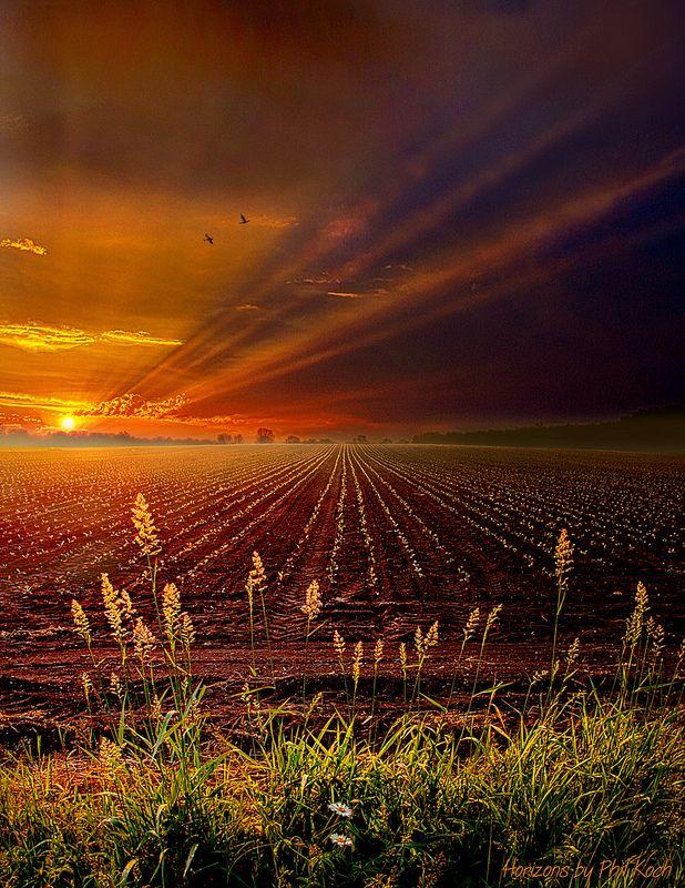 ♂ sunset orange field Take It To The Limit