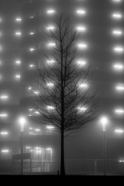Ben Morson. Such cool photographs.  i like fog.  Gram always calls it frog.  :.]