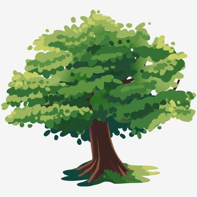 Tree Plan Design Promarker Google Search Tree Photoshop Architecture Drawing Watercolor Trees