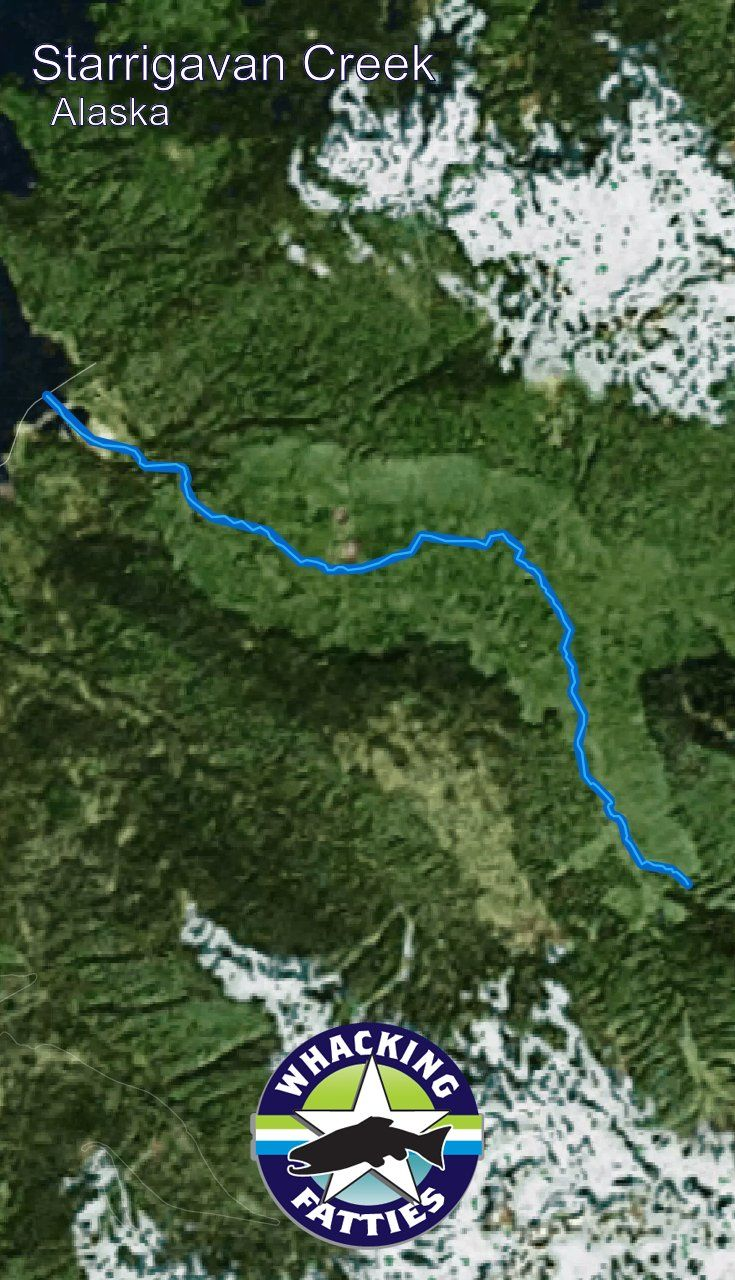 Alaska Major Cities Map%0A Fishing Report Starrigavan Creek