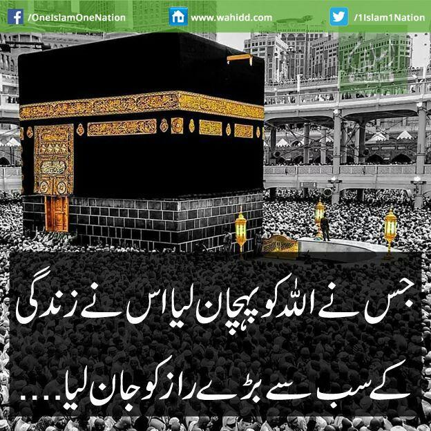 Listen Tilawat-e-Quran, Free Latest Naats, Qawaali and Islahi Bayanat in www.wahidd.com