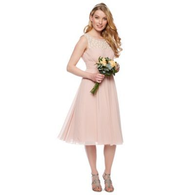 No. 1 Jenny Packham Designer rose pink floral embellished midi dress- at Debenhams.com