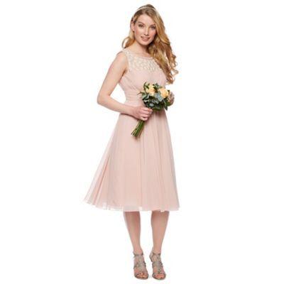 No. 1 Jenny Packham Designer rose pink floral embellished midi dress- at Debenhams.com