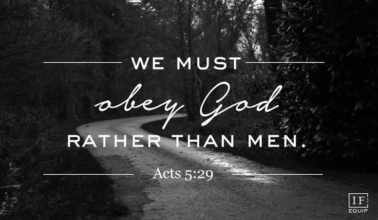 Be guided by the Spirit, not our circumstances. Acts 5:21-32 | IF:Equip