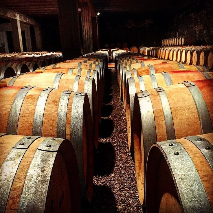 #barbaresco #cellar #langhe #alba #wine #growolder #italianexellence