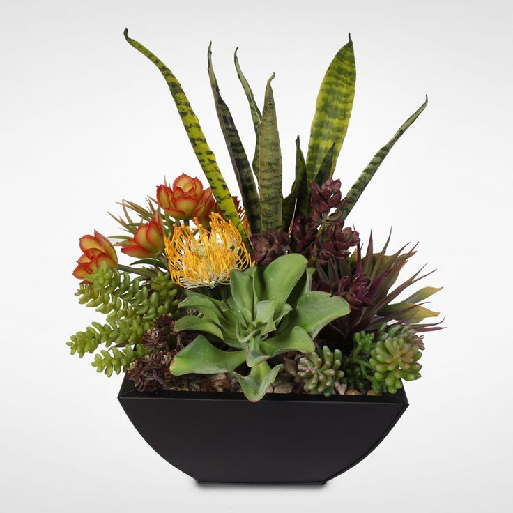 Bulk up your decorative options by adding this versatile arrangement to your collection. Vibrant colors bring life to your home at the table or on your mantel. Bright colors liven up your decor Succul
