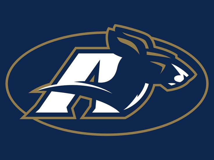 Image result for akron zips logo