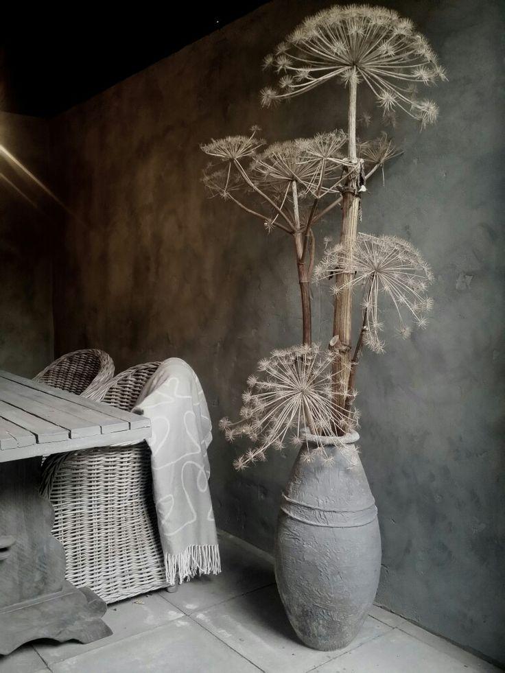 Niks zo decoratief als gedroogde berenklauw. In september altijd wel ergens af te snijden, maar pas op dat de zaden niet in je eigen tuin ontkiemen...