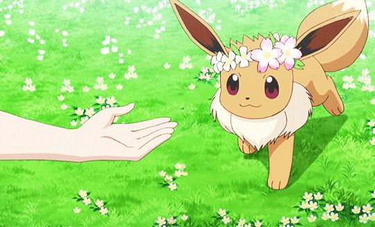 Eevee deciding that it wants to travel with Serena.