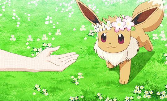 pokemon pokegraphic eevee pkmn