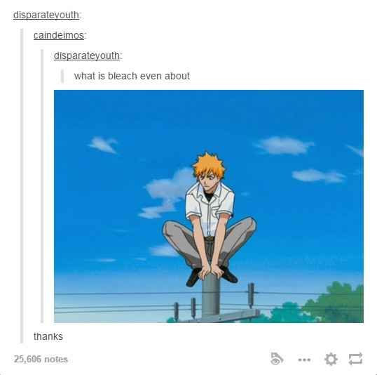 And when they explained what Bleach was actually about. || 33 Times The Anime Side Of Tumblr Was Pretty OK After All