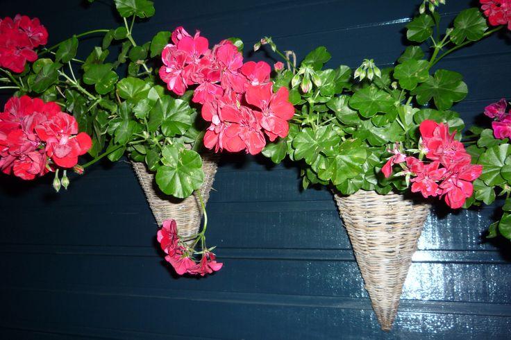 Op deze afbeelding is koud warmcontrast de blauwe kleur van de muur is koud en de rood roze for Warme of koude kleur