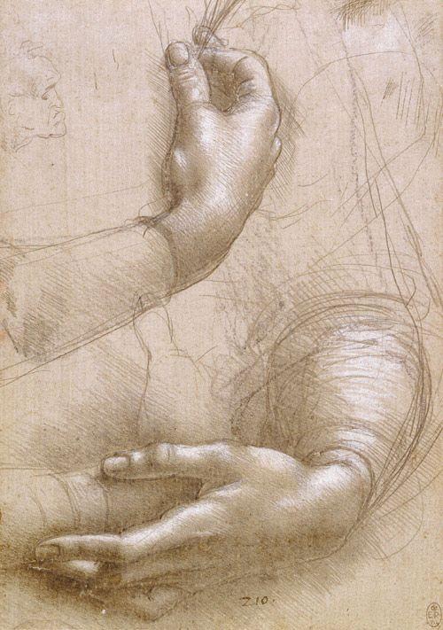 Study - Arms & Hands by Leonardo da Vinci