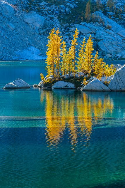 Backlit Alpine Larches at Crystal Lake in The Enchantments ,Cascade Range,Okanogan-Wenatchee National Forest,Washington State,USA