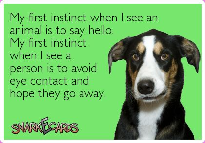 My first instinct when I see an animal is to say hello. My first instinct when I see a person is to avoid eye contact and hope they go away. #ecard #L…