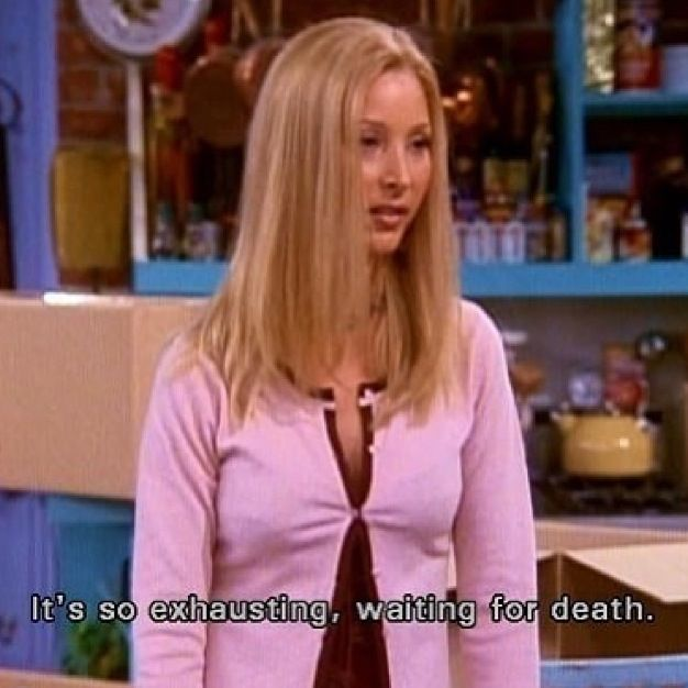 Friends Quotes Tv One Liners: Funny Quotes From Friends Phoebe. QuotesGram