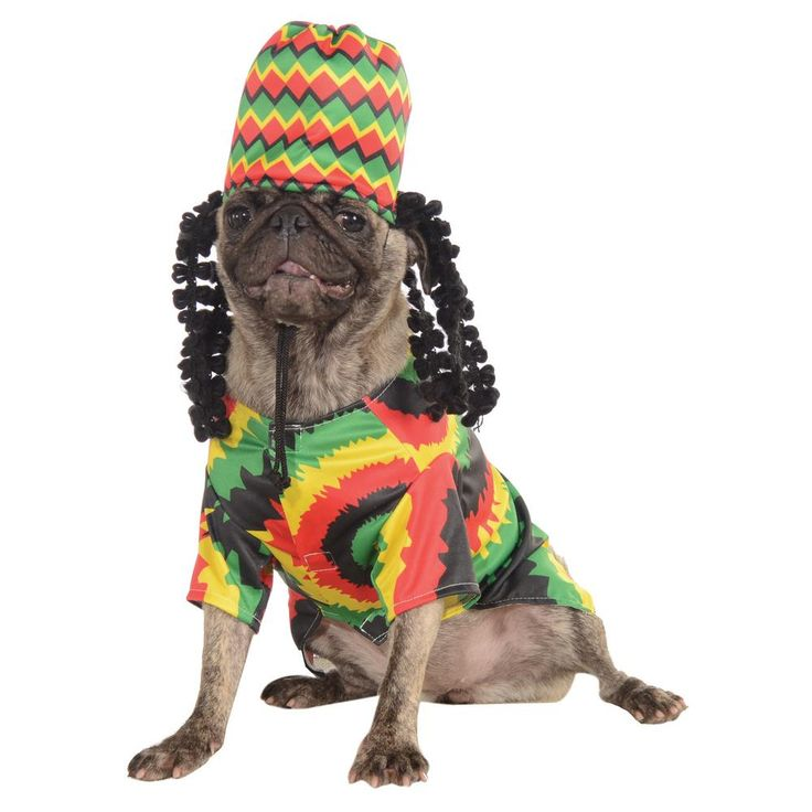 Have your pet chill out this Halloween with this colorful Rasta shirt and hat. Your furry friend can rock these cool dreads and tie-dye shirt for the holiday.