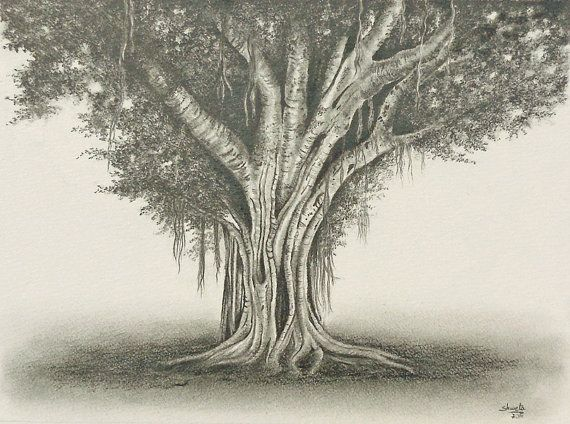 banyan tree graphite pencil drawing by aakritiarts on etsy watercolor pinterest graphite. Black Bedroom Furniture Sets. Home Design Ideas