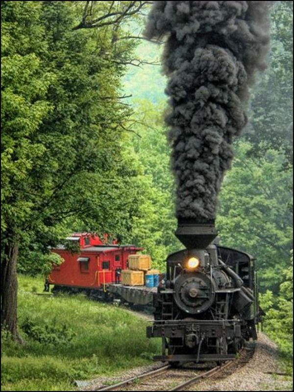 Pin by Arlene Shougg on TRAINS Train rides, Train tracks