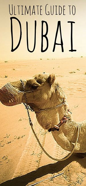 Best Dubai Things To Do Ideas On Pinterest Travel To Dubai - The 10 most amazing things to see in dubai