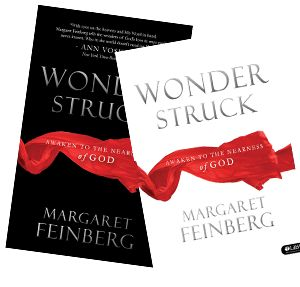 Wonderstruck Book and Workbook Combo Bible study by Margaret Feinberg. You may also purchase the DVD 7 part series for women's small group Bible study.