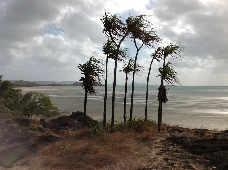 Cape York looking west