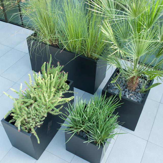 1000 id es sur le th me jardiniere castorama sur pinterest potager balcon castorama et balcon - Idee composition jardiniere exterieure ...