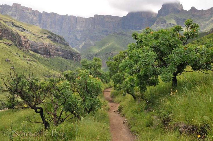 Hiking, Royal Natal National Park, South Africa  Nomadic Existence