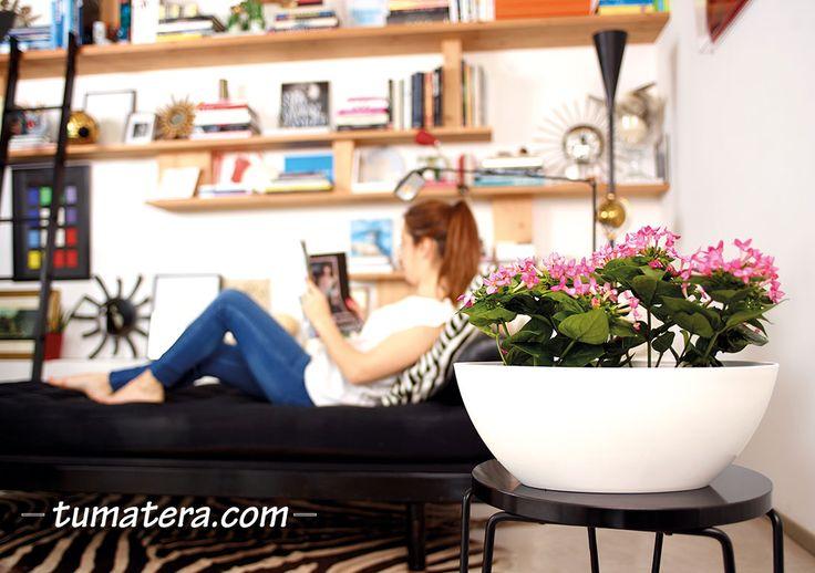 Matera de forma y bordes redondeados. Esta maceta de diseño más contemporáneo es una pieza versátil. Encuentralas en: http://www.tumatera.co/products/mpa-451715-barca/