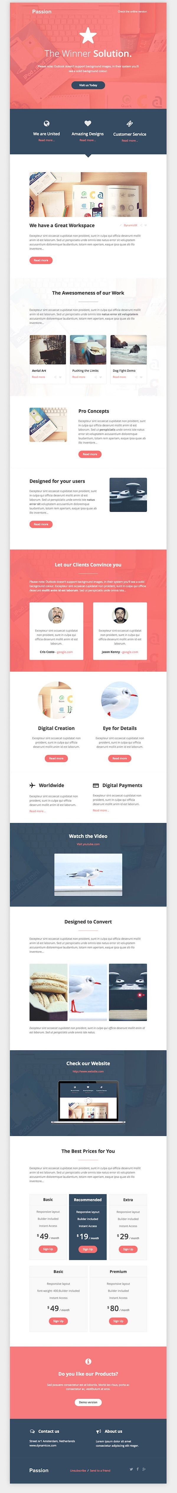 Clean Business Email Template                                                                                                                                                                                 More