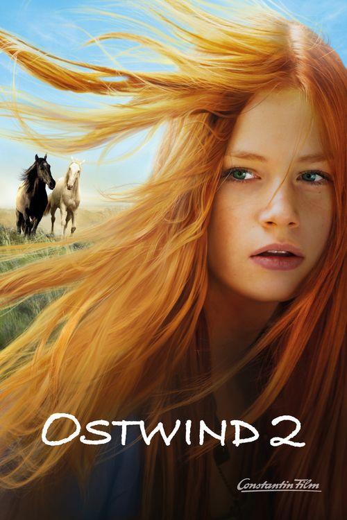 Watch Windstorm 2 Full Movie Online