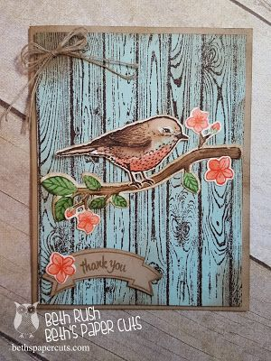 handmade card: Best Birds Stamp set from Stampin' Up!  ... card from Beth's Paper Cuts ... stamped woodgrain backgroun ... bird colored as a robn ... delightful!