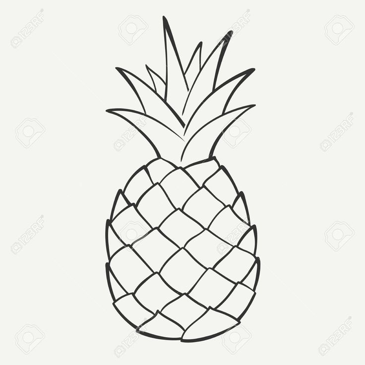 outline black and white image of a pineapple royalty free cliparts vectors and stock - Free Drawing Pictures