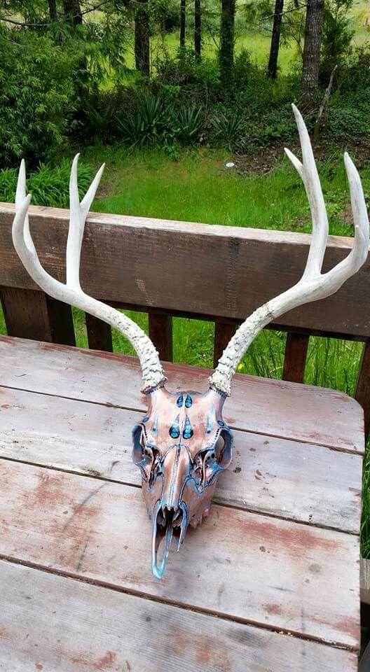 Hand painted deer skull by Resurrection Skulls