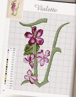 V violette
